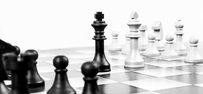 chess 316657